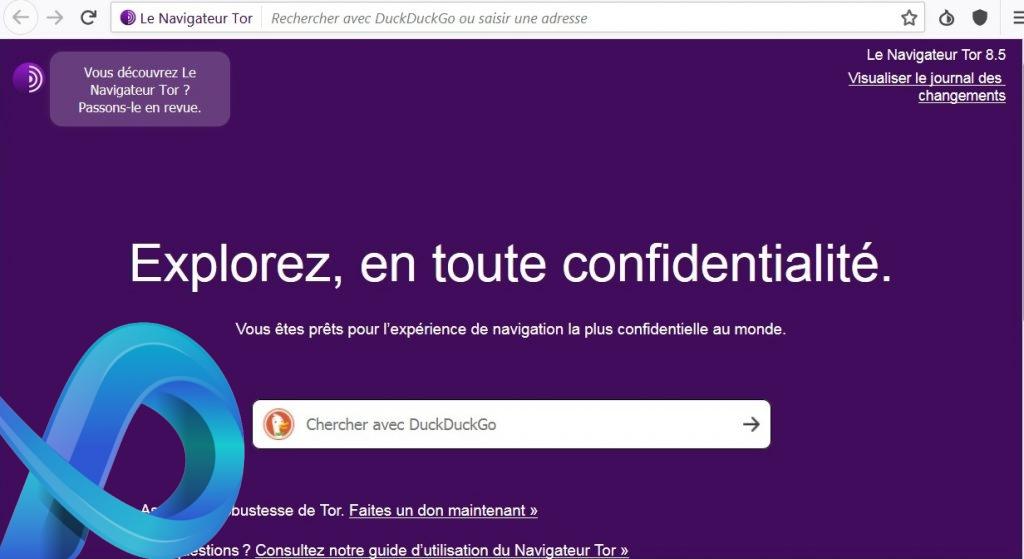 Moteur de recherche par défaut du navigateur Tor